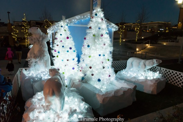 display of polar bears and white christmas trees lit up at night with colorful ornaments