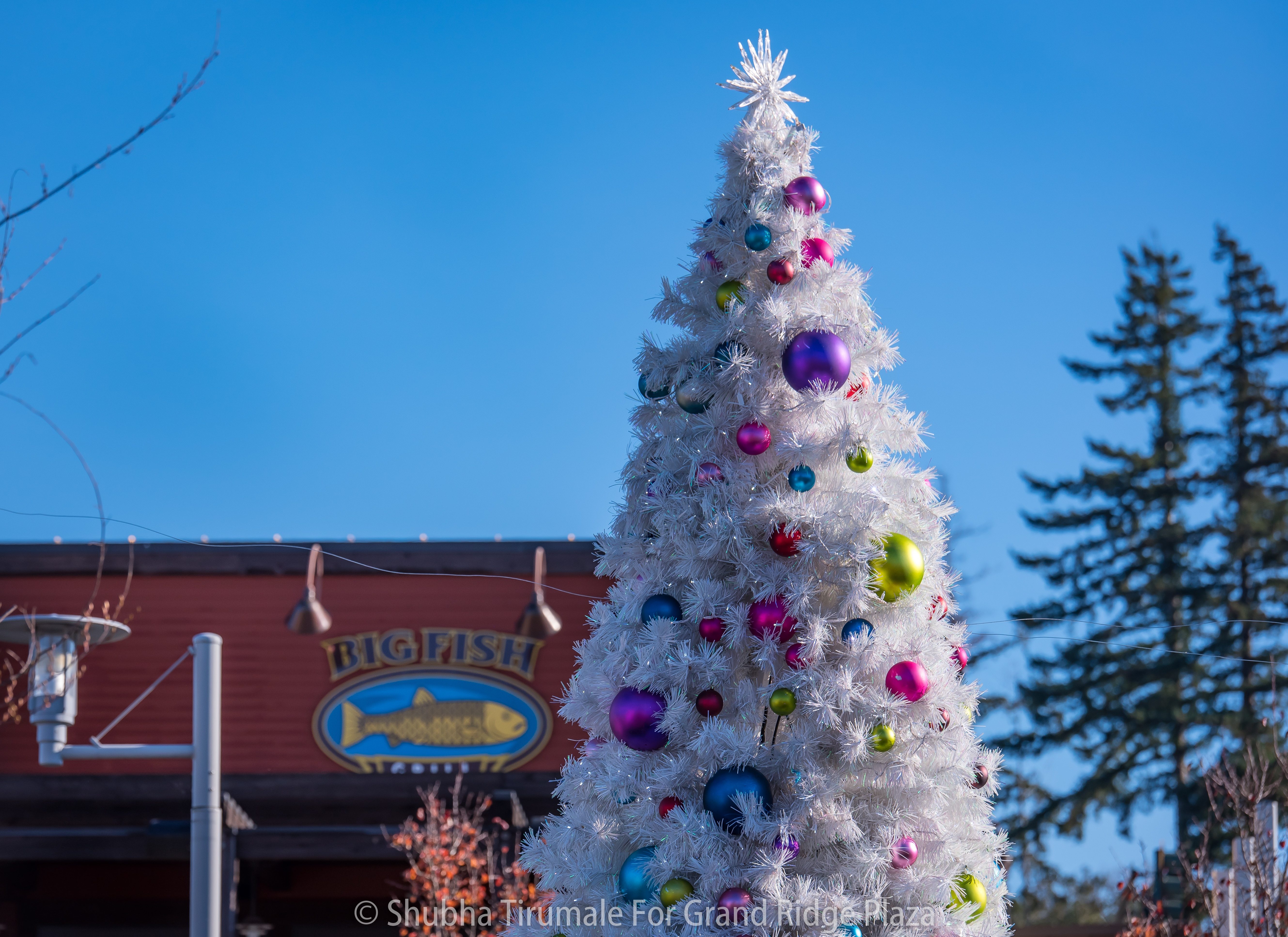 white artificial christmas tree with bright ornaments in downtown area