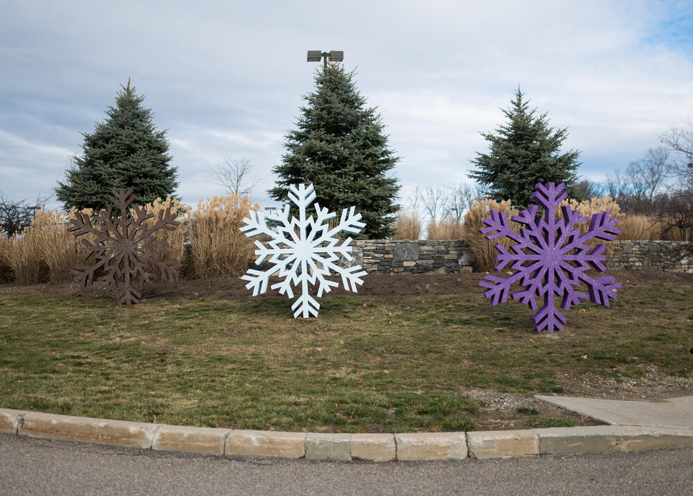 northborough_snowflakes