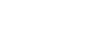 Regency-Logo2012-WHITE copy